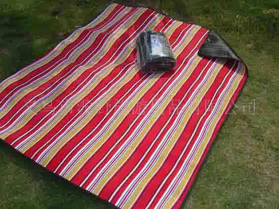 野餐垫,防潮垫,充气垫,充气枕头,户外用品