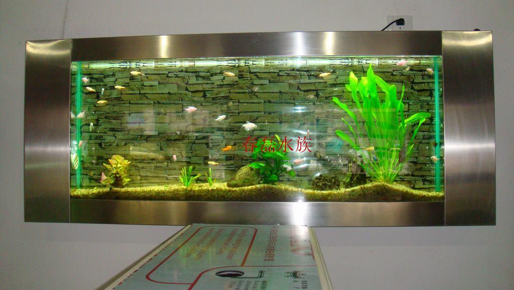 生态壁挂鱼缸 不锈钢边框