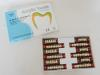 合成树脂牙(二层色)