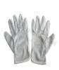 防静电洁净手套 防静电手套 无菌手套