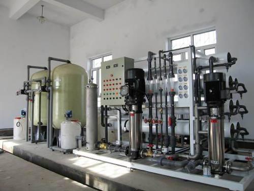 新美食品厂反渗透纯水设备