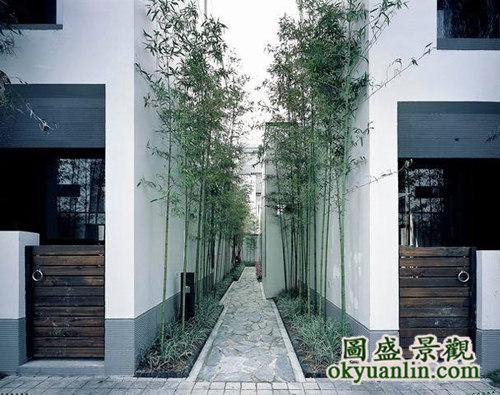 欧式,日式私家别墅庭院(花园)景观设计及施工
