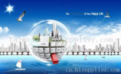 芜湖做外贸推广最专业的公司