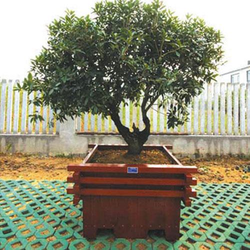 可将手工雕刻工艺应用到木制花盆上,开发了成套雕刻木制花.