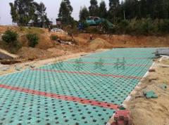 漳州植草磚