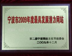 深圳公司外贸网站建设