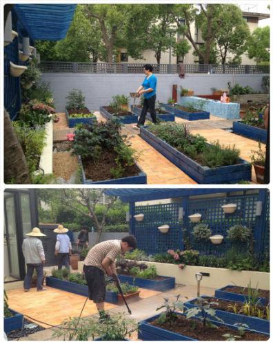 别墅庭院,私家花园,企业会所庭院花园,屋顶花园,酒店园林,售楼部样板