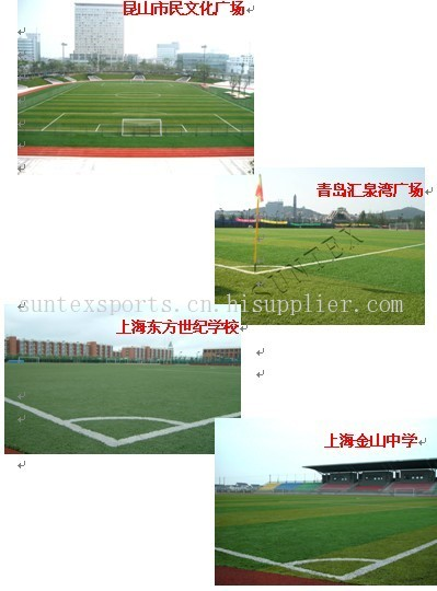 PE 50MM Z字型走针 足球场用人造草坪