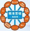 东莞海外精准营销平台