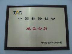 河南专业工程翻译公司