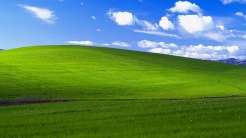 臨沂網絡公司提醒廣大網民-放棄XP系統
