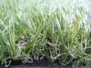 人造草坪 草坪 草皮