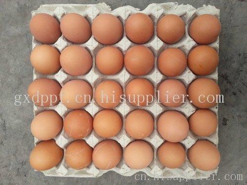 南宁鸡蛋批发