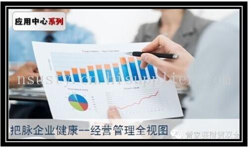 以图形化的方式展示企业经营指标图片