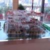 贵阳建筑模型公司