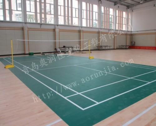 篮球,多功能场馆,健身房,舞蹈房,学校,单位活动室,幼儿园,游乐园,体育