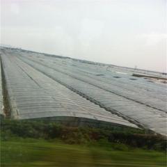 貴州塑料薄膜