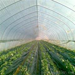 农用大棚膜