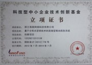 国家双软认证