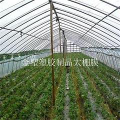 贵州地膜厂家价位