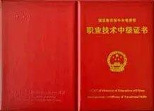 职业技术证书