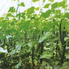 贵阳蔬菜大棚膜生产厂家