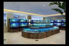 龙岩酒店海鲜池制作