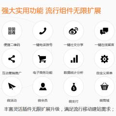手机网站开发