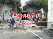 鹿寨吊车叉车出租——大件吊装和设备搬迁就找柳州柳搬搬运有限公司