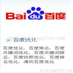 潍坊做百度优化的网络公司