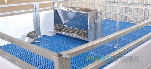 母猪产床保育床1