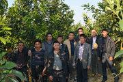 广东农业专家来参观正达三红蜜柚母树