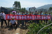 广东清远市领导考察正达三红蜜柚苗场
