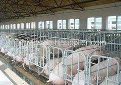 贵州母猪产床