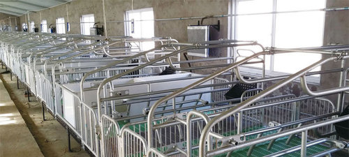 贵阳仔猪保育床经营厂