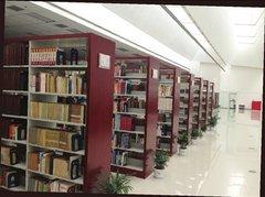 香樟木图书馆书柜