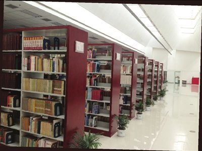 图书馆香樟木书架