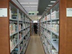 图书馆香樟木书柜