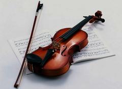 遵义小提琴行