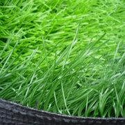 人造草坪的優點