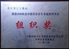 2010年度中国音协音乐考级组织奖