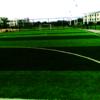 重慶人造草坪廠