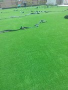 人造草坪樣品