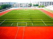西安高校運動場草坪