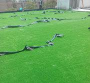 人造草坪鋪設現場