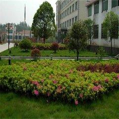 貴陽園林綠化工程