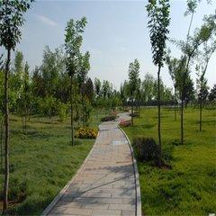 貴陽綠化工程