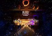 【红玫瑰】星空-婚礼定制