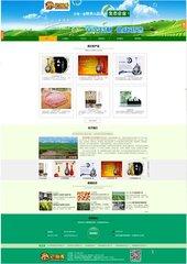 陕西企业网站开发制作