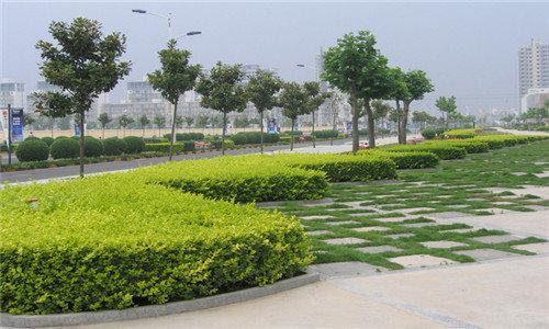 贵州草坪砖厂